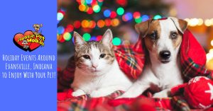 Holiday Events Around Evansville, Indiana To Enjoy With Your Pet